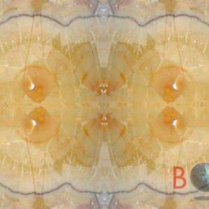 Onice Apricot Premium Borga Marmi