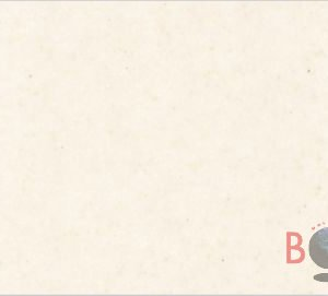 Abalone Borga Marmi