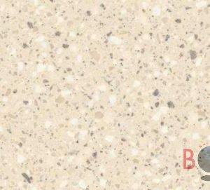 Fossil Borga Marmi