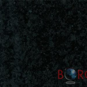 Labrador black Borga Marmi 2