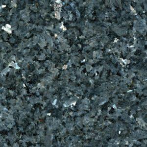 Labrador Marina Pearl Borga Marmi 1