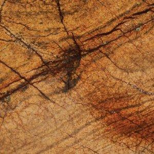 Rain Forest Gold Brown Borga Marmi 1